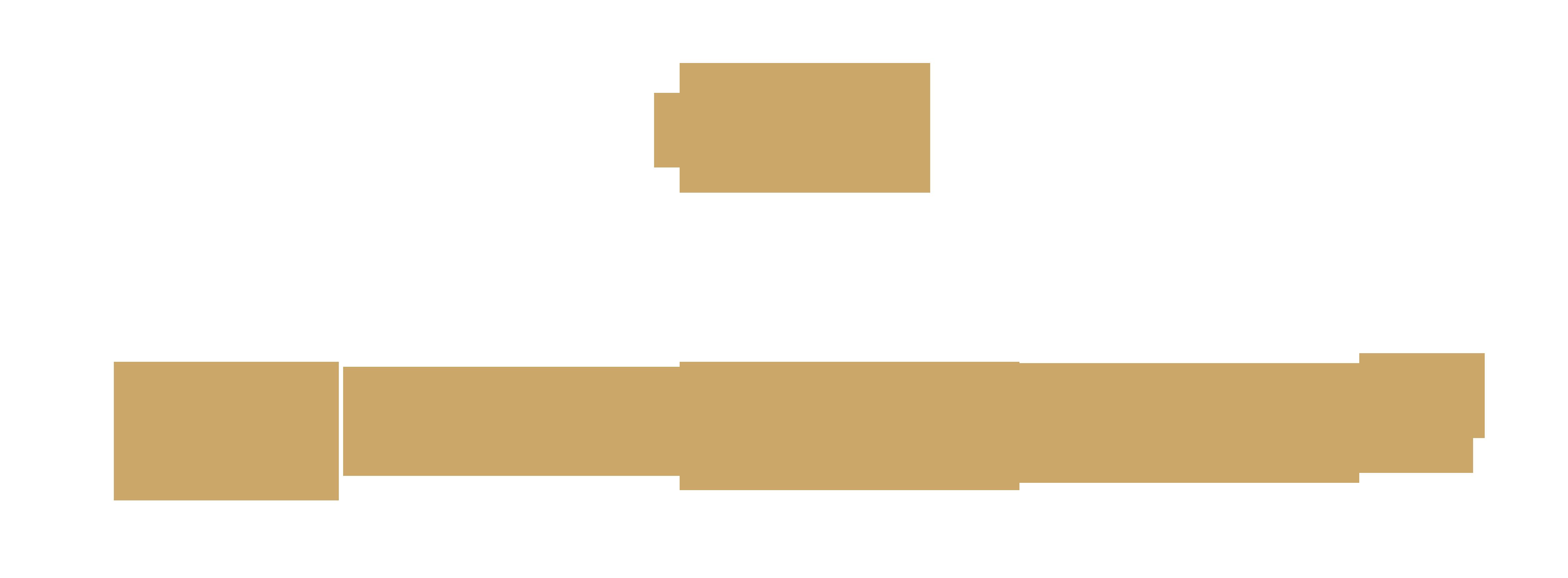 Verein Sächsischer Prunkgondeln e.V.
